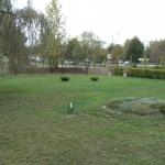 plac-zielony